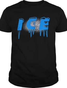 Fire and Ice Dynamic Duo Matching Costumes shirt